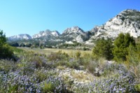 alpilles hills flowers provence hiking
